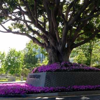 Photo of Century City - LA sign in Westside, Los Angeles