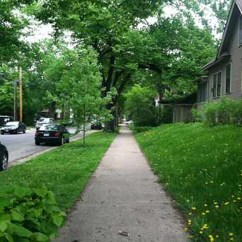 Photo of Green Neighborhood in East Calhoun, Minneapolis