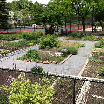 Photo of Lawndale Terrace Garden in Jamaica Central - South Sumner, Boston