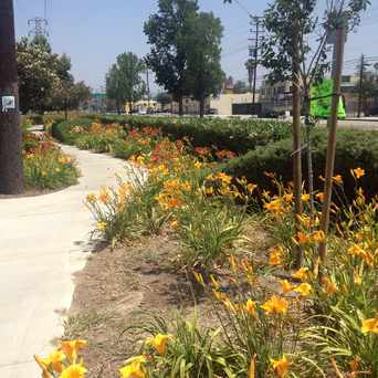 Photo of Vineland / Hortense in Mid-Town North Hollywood, Los Angeles