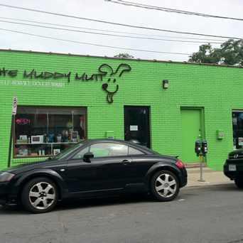 Photo of The Muddy Mutt in Nauck, Arlington