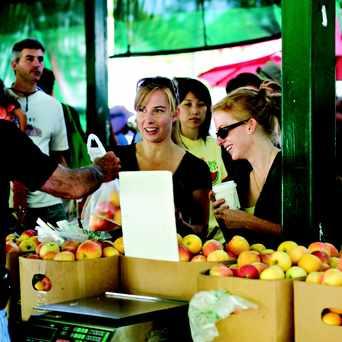 Photo of Davis Farmers Market in Davis