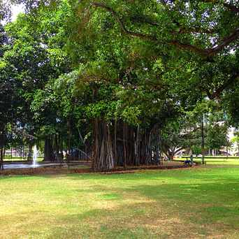 Photo of Thomas Square in Makiki - Lower Punchbowl - Tantalu, Honolulu