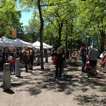 Photo of St Johns Farmers Market in Cathedral Park, Portland