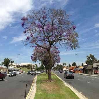 Photo of Glenoaks Blvd in Grandview, Glendale