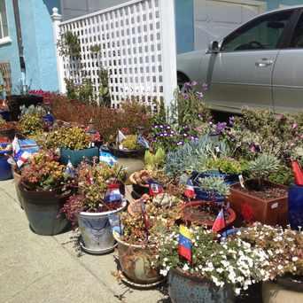 Photo of Barcelona Ave in Anza Vista, San Francisco