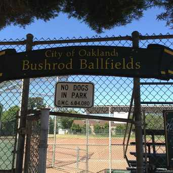 Photo of Bushrod Park in Bushrod, Oakland