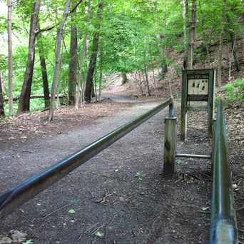 Photo of Coldspring Park Lifecourse Exercise Trail in Newton