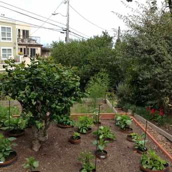 Photo of Clipper Terrace Community Garden in Upper Market, San Francisco