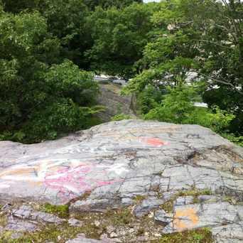 Photo of Foster Street Rock in St. Elizabeth's, Boston