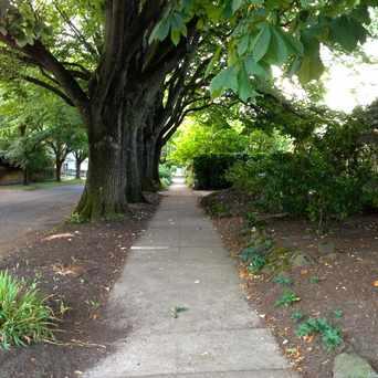 Photo of NE Brazee & 10th St., Portland, OR in Irvington, Portland