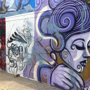 Photo of Street art at Haight and Laguna in Mint Hill, San Francisco