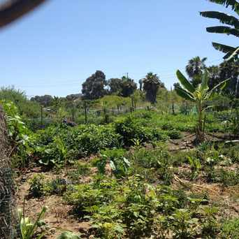 Photo of Garden in San Diego