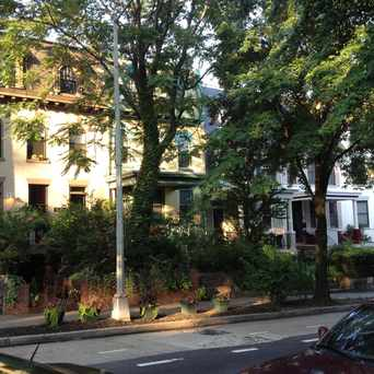 Photo of Irving Street NW DC in Mount Pleasant, Washington D.C.