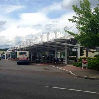 Photo of Intercity Transit in Olympia