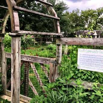 Photo of Fisher Park Community Garden in Olney, Philadelphia