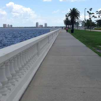 Photo of Bayshore Boulevard in Tampa