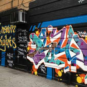 Photo of 7 Crown Heights: Crown Heights Wall in Crown Heights, New York