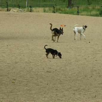 Photo of Berkeley Dog Park in Berkeley, Denver