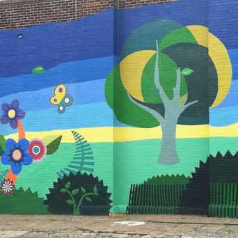 Photo of Beautiful Wall Mural in Juniata Park - Feltonville, Philadelphia