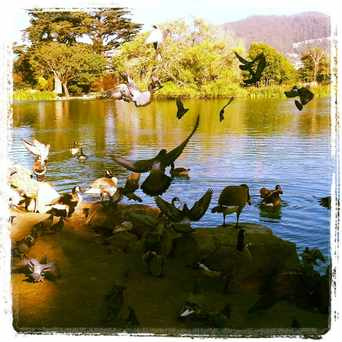 Photo of Stow Lake in San Francisco