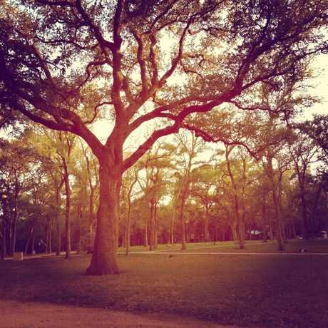 Photo of Garrison Park in Garrison Park, Austin