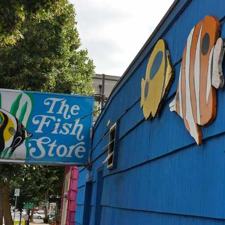 Photo of The Fish Store in Roosevelt, Seattle