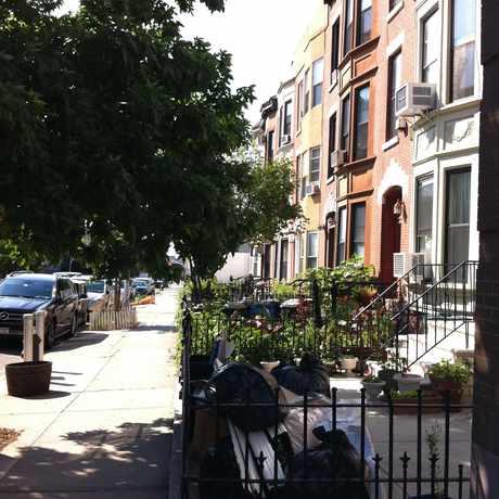 Photo of Gowanus in Gowanus, New York