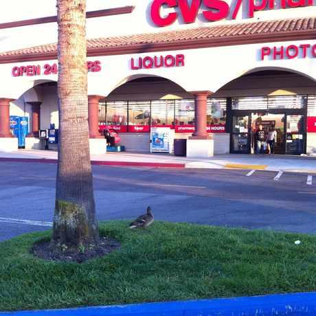 Photo of CVS/pharmacy in La Mirada