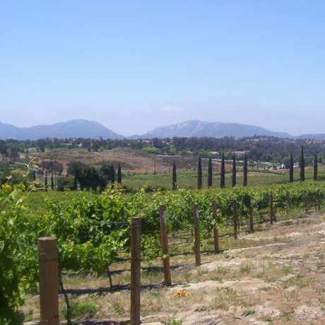 Photo of Fallbrook Winery in Fallbrook