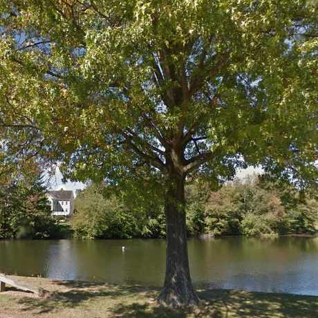 Photo of Lake Nirvana in Gaithersburg