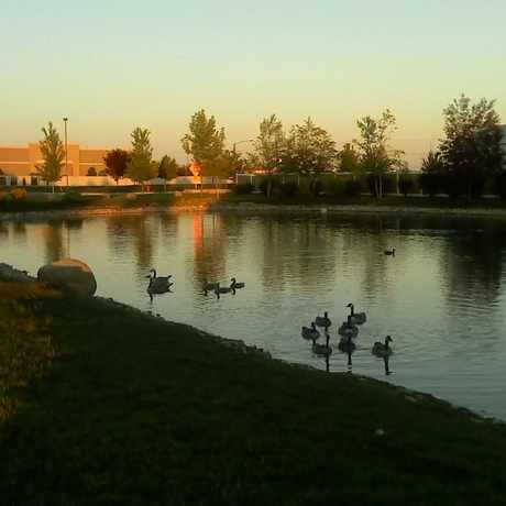Photo of Champion Park in Meridian