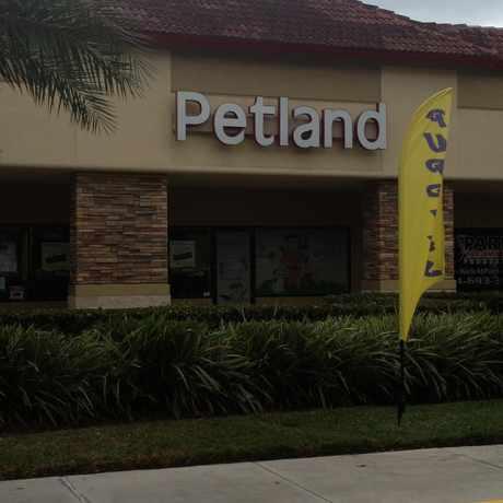 Photo of Broward Petland, Florida 84, Davie, FL in Davie