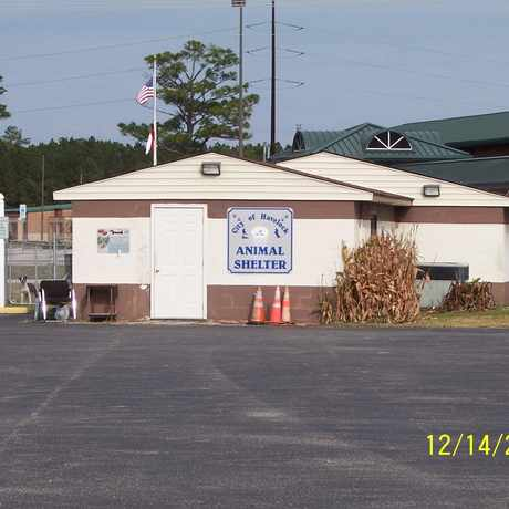 Photo of City of Havelock NC Animal Shelter in Havelock