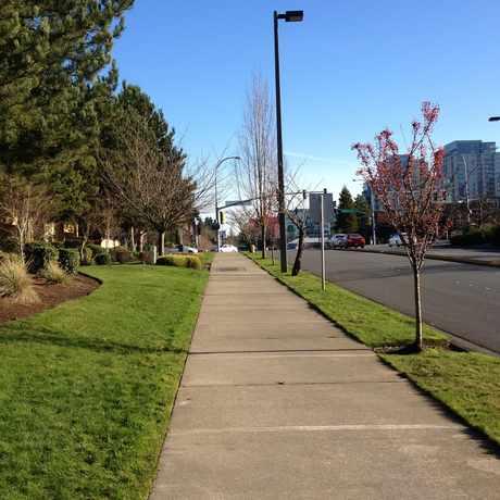 Photo of 12 Central Square in Northwest Bellevue, Bellevue