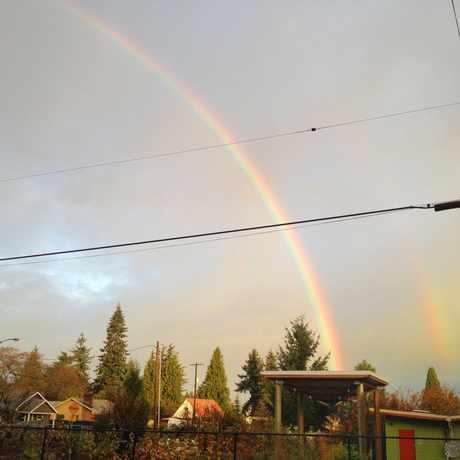 Photo of Rigler Community Garden in Cully, Portland
