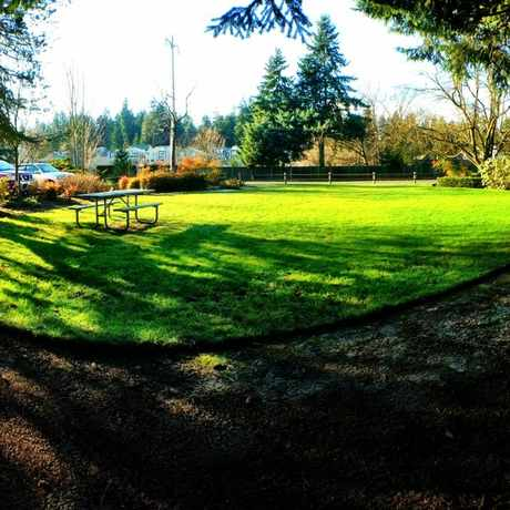 Photo of North Towne Park in Bellevue