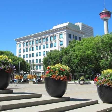 Photo of Burns Building Inc in Calgary
