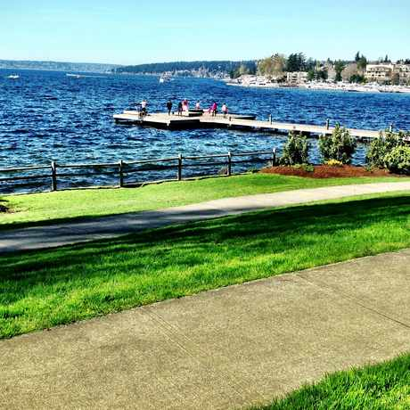 Photo of David E Brink Park in Kirkland