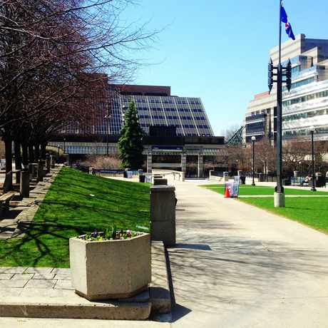 Photo of Mel Lastman Square in Toronto