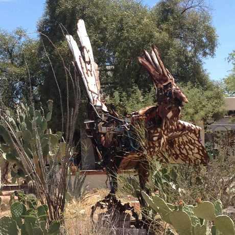Photo of Roadrunner Sculpture in Limberlost, Tucson