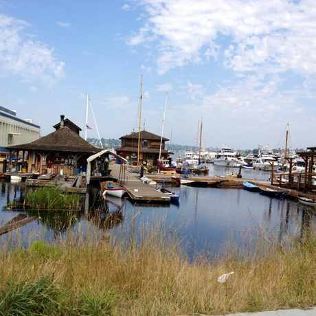 Photo of The Center for Wooden Boats in Seattle