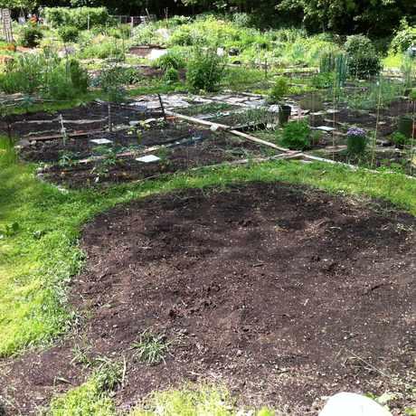 Photo of Paul Gore Community Garden in Hyde Square, Boston