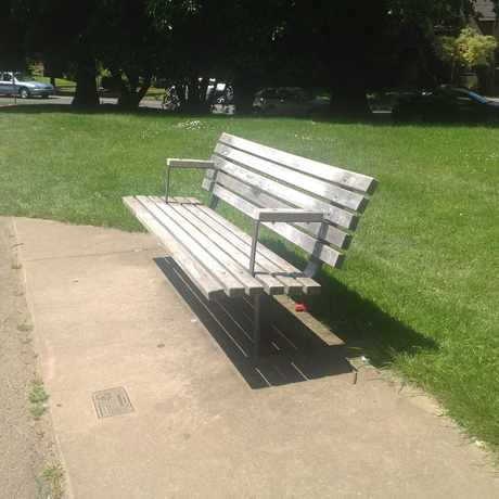 Photo of Bench With A View Of The Action in Grant Park, Portland