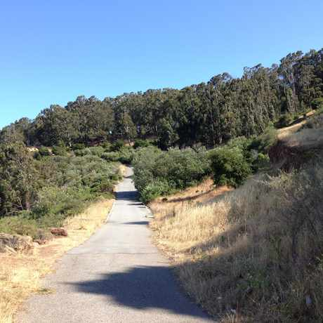 Photo of Bayview Park in Candlestick Point State Recreation Area, San Francisco