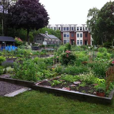 Photo of Gardens for Charlestown in Medford Street - The Neck, Boston
