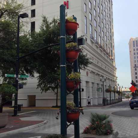 Photo of Streets of Downtown Orlando in Orlando