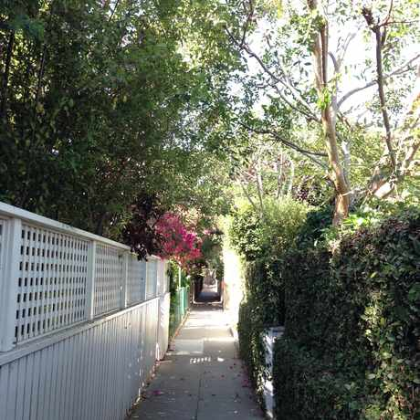 Photo of Marco Place in Venice, Los Angeles