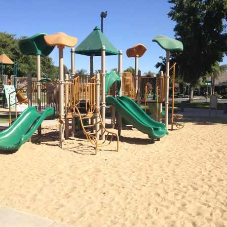 Photo of Haggin Oaks Park in Bakersfield
