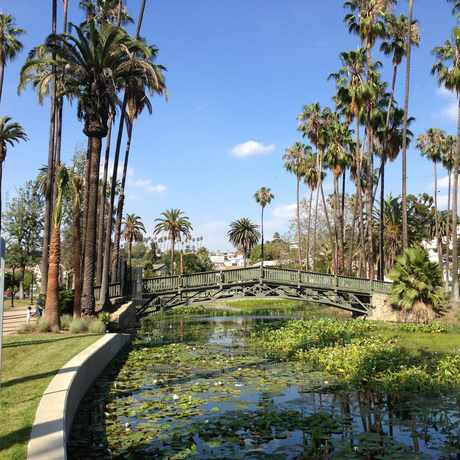 Photo of Echo Park Lake in Los Angeles